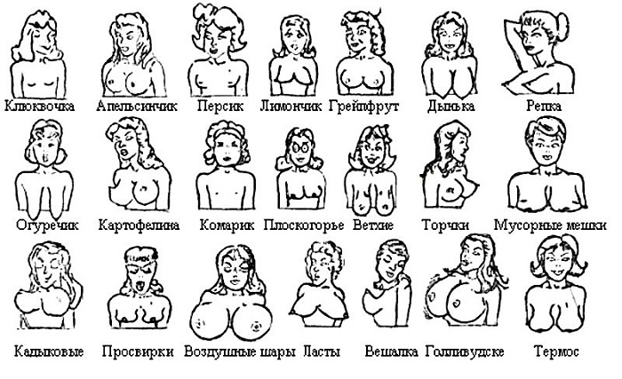 типы груди