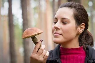 можно ли грибы при грудном вскармливании